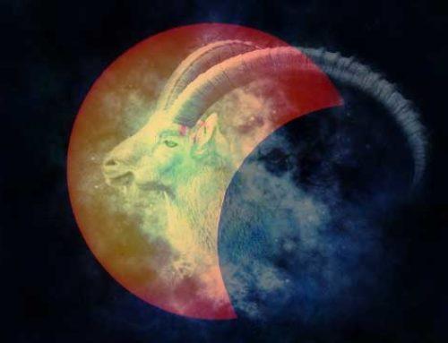 Luna nueva de capricornio y eclipse solar parcial (5/6 enero 2019)