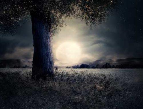 Luna llena de virgo (19 febrero 2019): mirando en detalle
