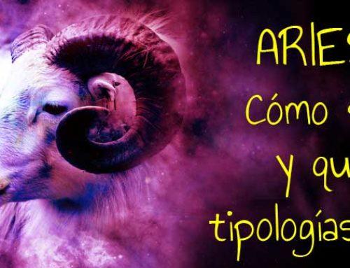 Aries: cómo son y que tipologías hay ¡Descúbrelo!