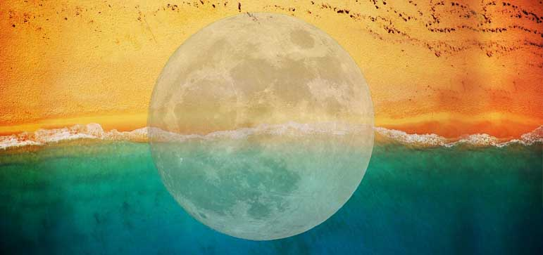 luna llena en tauro 2019